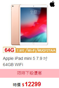 Apple iPad mini 5 7.9 吋 64GB WiFi