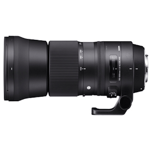 SIGMA 150-600mm F5-6.3 DG OS HSM Contemporary 三年保固 (公司貨)